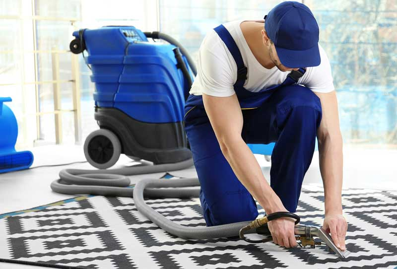 Toronto Carpet Cleaning Vivid Cleaning